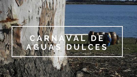 ¡Carnaval de Aguas Dulces 2016!