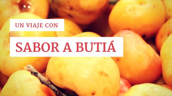 Un viaje con sabor a butiá